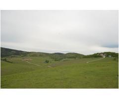 Zemljitše u Gajevima - 13 hektara