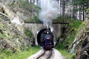 Izlet na Mokru Goru i Drvengrad