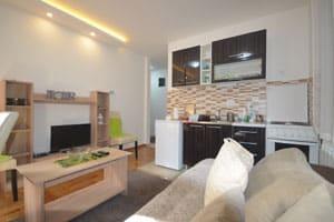 Apartman Goca